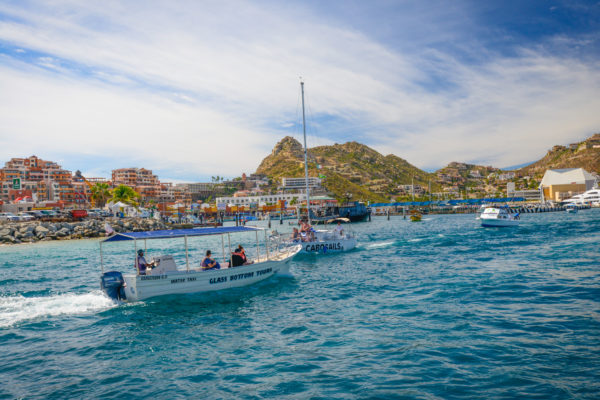 Cabo harbor feels like party central with upbeat music blaring and heavy traffic of excursion boats carrying happy vacationers