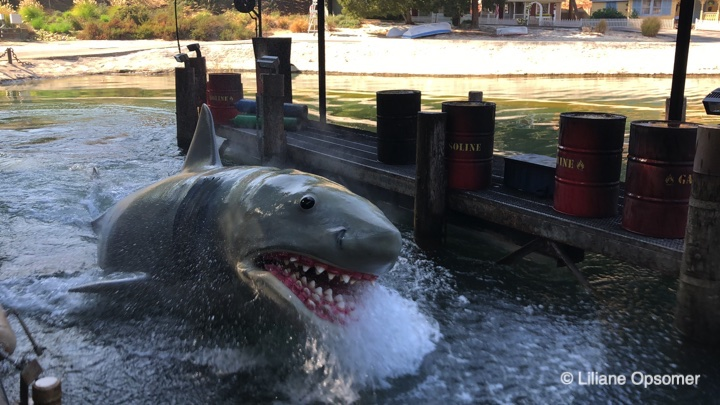 Bruce the shark from Jaws