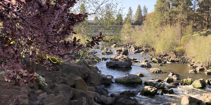 How to spend 24 hours in Bend, Oregon, without your phone