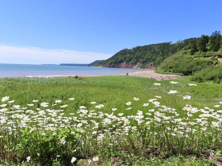 Long Beach on the Fundy Trail Parkway