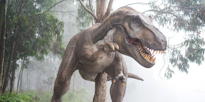 This interactive map shows you what dinosaurs lived in your area